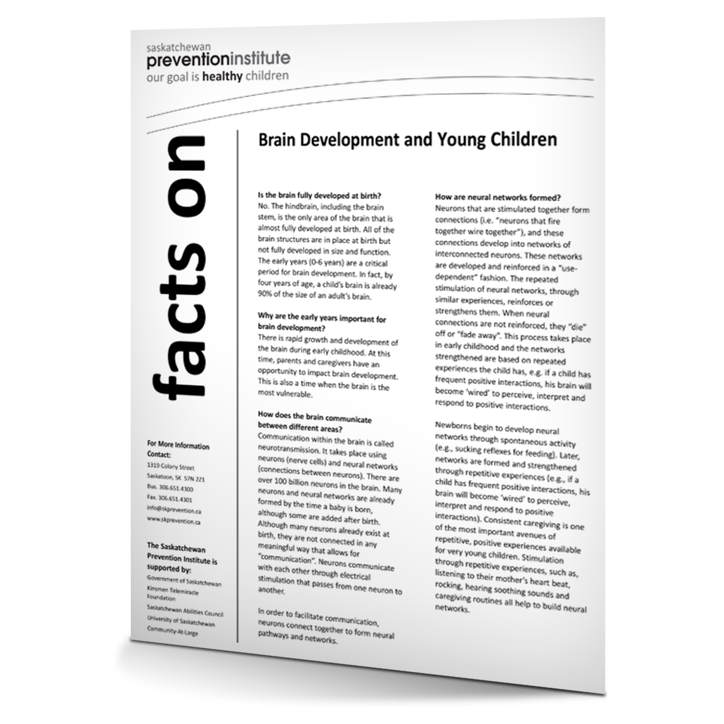 Brain Development and Young Children