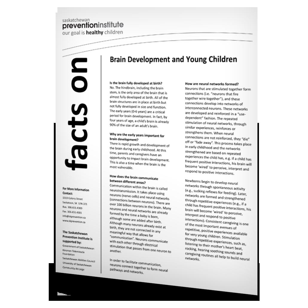 Brain Development and Young Children