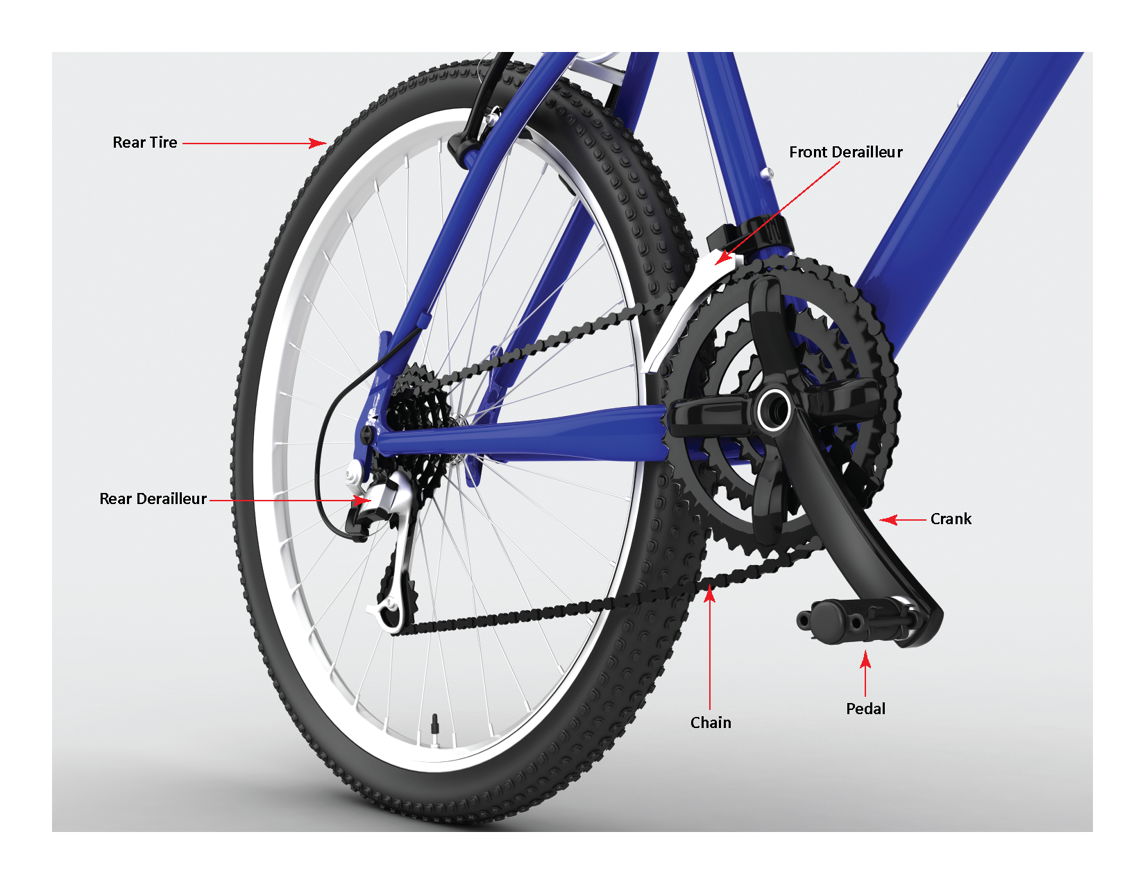 Bicycle Inspection and Maintenance