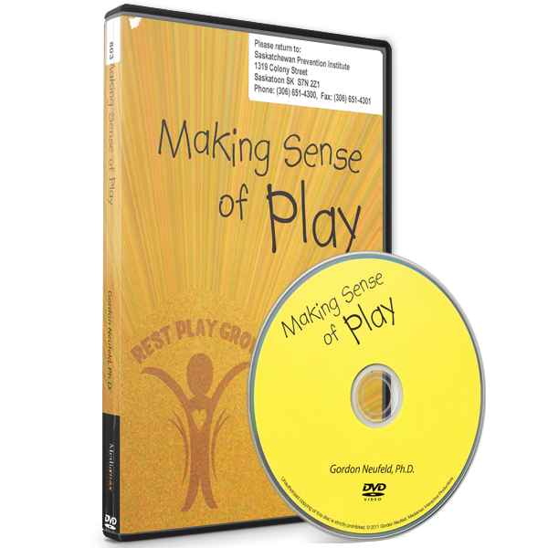 Making Sense of Play