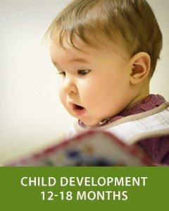 Child Development 12-18 Months