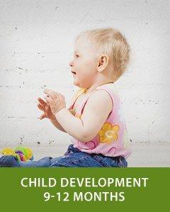 Child Development 9-12 Months