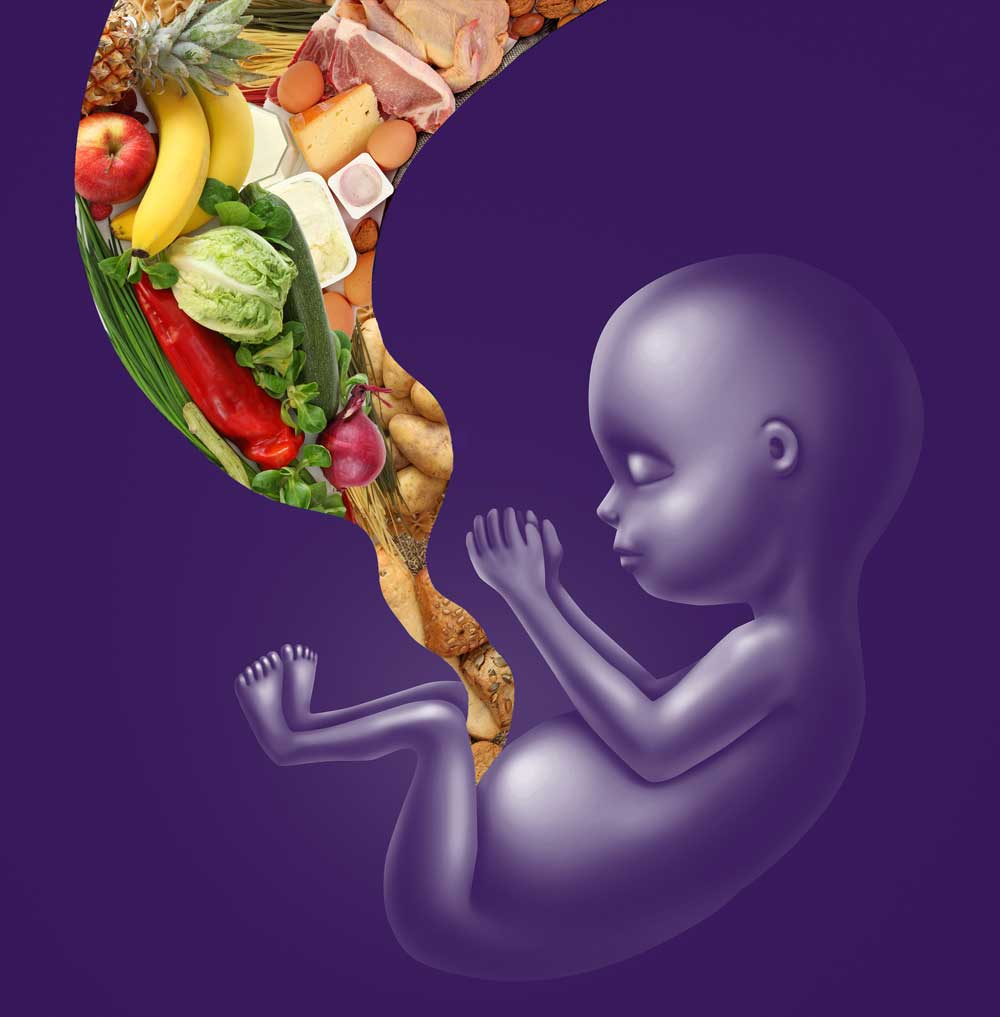 Alcohol And Pregnancy Saskatchewan Prevention Institute