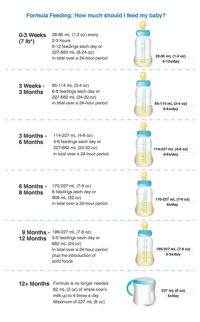 Feeding Chart by Months
