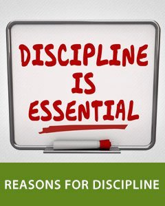 Reasons for Discipline