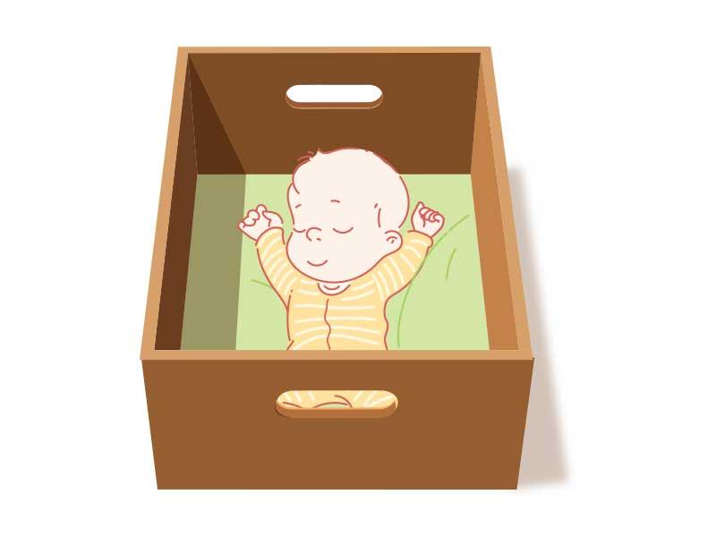 Box or Carton